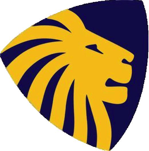 Sydney Uni Handball Logo