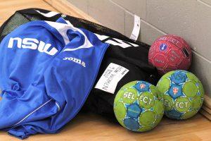 NSW Handball Balls